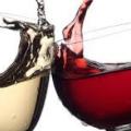 DEMO Wine Road Show  icon